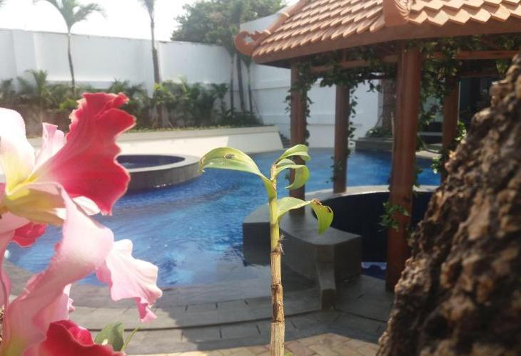 KJ Yogyakarta