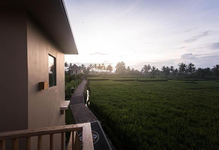 Manyi Village Ubud