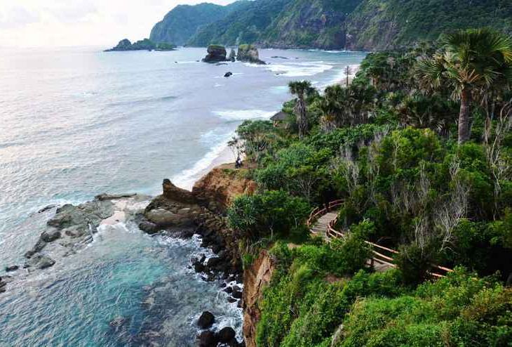 Foresta Papuma