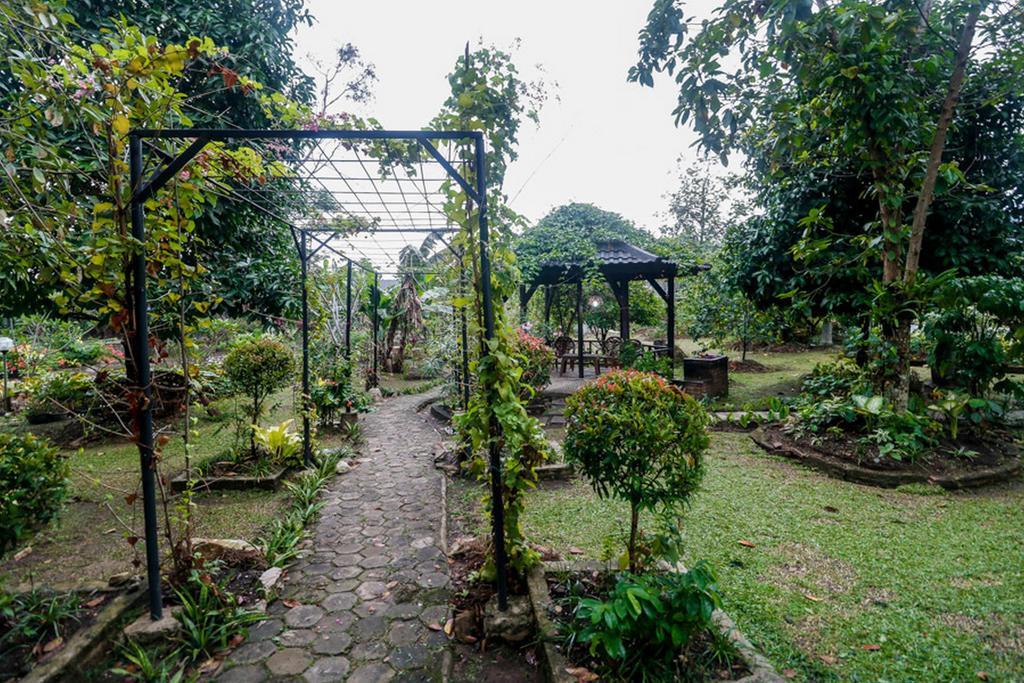 RedDoorz near Lampung Walk